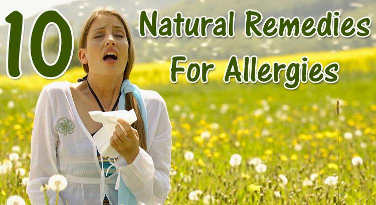 Herbal supplements for allergies