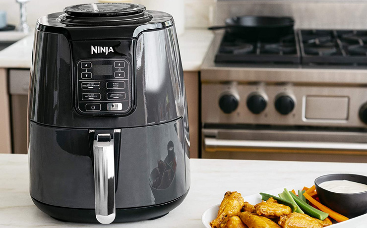 Ninja Air Fryer Appetizers